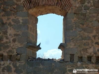 Berrea del Ciervo en Cabañeros y Montes de Toledo en 4x4;semana santa viajes bosques encantados